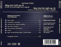 Weg zum Licht, op. 61