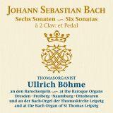 Johann Sebastian Bach: Triosonaten für Orgel