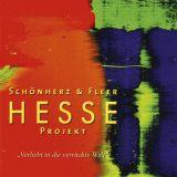 Schönherz & Fleer:  Hesse Projekt
